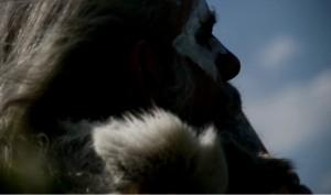 neandertal_profil - copie